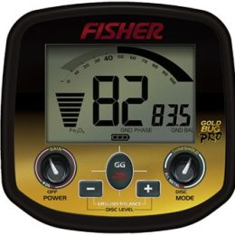 Fisher Gold Bug DP - display
